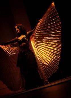 крылья харизмы